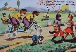 Cpa  Chats Humanisés , PROMENADE En TANDEM , VELO,  Chat , Dressed Kitten Cat  BICYCLE  KATZE EDITEUR M.D PARIS - Animaux Habillés