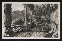 *Le Jardin Exotique* Ed. C.A.P. Nº 37. Nueva. - Jardín Exótico