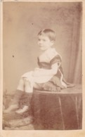 ANTIQUE CDV PHOTO.  YOUNG GIRL -MARY HANNAH COCKING. 1880, SHEFFIELD STUDIO - Anciennes (Av. 1900)