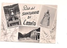 M7403 LAZIO CANNETO SANTUARIO SETTEFRATI FROSINONE 1956 VIAGGIATA - Italia