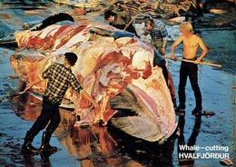 HVALFJÖRDUR : Whale - Cutting - Island
