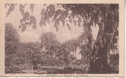 CONAKRY  Paysage à Camayenne - Guinée Equatoriale