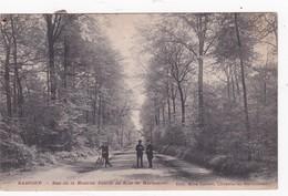BASCOUP  RUE DE LA ENTREE DU BOIS DEEMARIEMONT 1912 - Chapelle-lez-Herlaimont