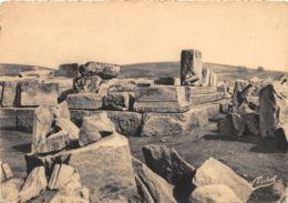 19-PLATEAU DE MILLEVACHE-N°262-A/0403 - Autres Communes