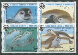 Mauretanien 1986 WWF Naturschutz Mittelmeer-Mönchsrobbe 871/74 Postfrisch - Mauritanië (1960-...)