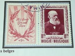 Belgique COB 898/899 . Écrivains Belges  . Oblitérés - Belgium