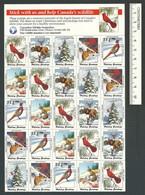 B53-25 CANADA Canadian Wildlife Federation Xmas Seals Sheet 1991 MNH English - Local, Strike, Seals & Cinderellas