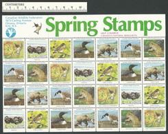 B53-26 CANADA Canadian Wildlife Federation Nature Seals Sheet 1981 MNH - Local, Strike, Seals & Cinderellas