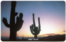 AR-TLC-URM-0007 - Jujuy - Two Cactus At Sunset (MINT) - Argentina