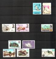 Bermuda, SIngapore, Mauritius, Seychelles, Bahamas, Lot Of 10 Used Stamps - Birds, Shells, Fishes, Lizards - Bermuda