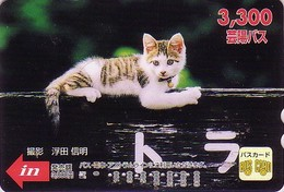 Carte Prépayée Japon - ANIMAL - CHAT - CAT Japan Prepaid Bus Card 3300 / V4 - KATZE - GATTO - Hiro 4756 - Gatti