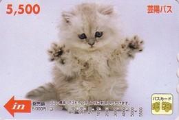 Carte Prépayée Japon - ANIMAL - CHAT - CAT Japan Prepaid Bus Card 5500 / V4 - KATZE - GATTO - Hiro 4759 - Gatti