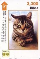 Carte Prépayée Japon - ANIMAL - CHAT - CAT Japan Prepaid Bus Card 3300 / V4 - KATZE - GATTO - Hiro 4763 - Gatos