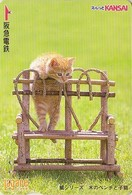Carte Prépayée Japon - ANIMAL - CHAT - CAT Japan Prepaid Lagare Card 2000 - KATZE - GATTO - 4766 - Gatos