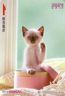 Carte Prépayée Japon - ANIMAL - CHAT - CAT Japan Prepaid Lagare Card 1000 - KATZE - GATTO - 4767 - Gatos
