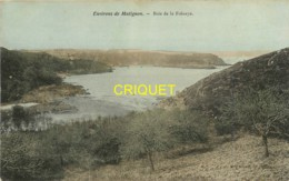 Dépt. 22, Environs De Matignon, Baie De La Frénaye, Carte Pas Courante - Sonstige Gemeinden
