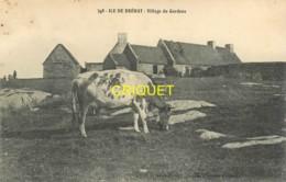 22 Ile De Bréhat, Village Du Gardenc, Vache Au 1er Plan, Carte Pas Courante - Ile De Bréhat