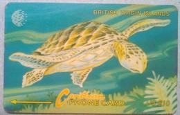 21CBVC Turtle $10 - Virgin Islands