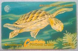 21CBVD Turtle $10 - Virgin Islands