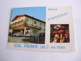 Belluno - Hotel S. Martino Col Perer M. 1050 + Funghi E Birra - Belluno