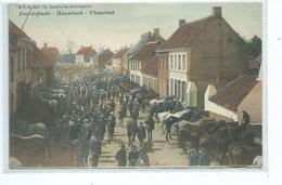 Torhout - Thourout. Peerdefeeste - Haanhoek D.V.D 8921 - Marché Aux Chevaux - Torhout