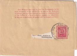 GUYANNE BRITANNIQUE ENTIER POSTAL BANDE JOURNAL - Brits-Guiana (...-1966)