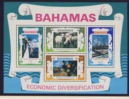 BAHAMAS 1975  BLOC RESSOURCES ECONOMIQUES   YVERT  N°B14 NEUF MNH** - Bahamas (1973-...)