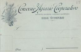 140 - Viterbo - Otros