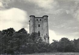 AUDE - 11 - ARQUES - CPSM GF NB - Le Château - France