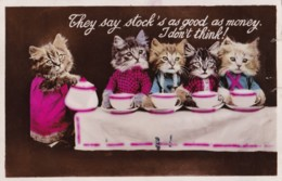 AP97 Animals - Dressed Up Cats Having Tea - Cats