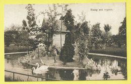 * Sint Katelijne Waver (Antwerpen - Anvers) * (E. & B.) Institut Des Ursulines, étang Aux Cygnes, Zwaan, Swan, Vijver - Sint-Katelijne-Waver
