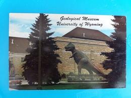 Laramie - Geological Museum University Of Wyoming - Laramie