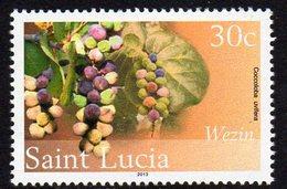St. Lucia 2010 30c Definitive, Wmk. New Multiple Crowns, 2013 Imprint, MNH (SG 1383) - St.Lucia (1979-...)