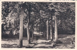 Leuven Louvain Zusters Franciskanessen Van Het H. Hart Nr 39 Parklaan - Leuven
