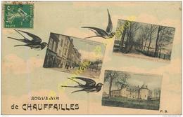71.  Souvenir De CHAUFFAILLES .  CPA Multivues . - France