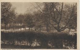AK 0066  Schildberg - Herbstmotiv Aus Dem Park Um 1910-20 - Pommern