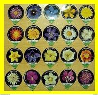 CCC - KRD N°320 - Fleurs - Série Complète 20 Pces - Opercules De Lait