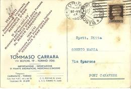 """1711 """" TOMMASO CARRARA-TORINO-IMP/ESP. PIANTE AROMATICHE,MEDICINALI E DROGHE """"CART. POST. ORIG. SPED. - Negozi"""