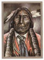 Thème  Indiens -- WOLF ROBA  Um  (1870) --  Dieser Cheyenne--illustrateur Et Texte  K-D  KUBAT - Native Americans