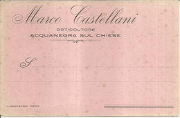 """1716 """" MARCO CASTELLANI - ORTICOLTORE - ACQUANEGRA SUL CHIESE """" CART. POST. ORIG. NON SPED. - Mercanti"""