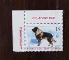 MACEDOINE, Chiens, Chien, Dog, Dogs, Perro, Perros. Yvert N° 151 **  (MNH) - Hunde