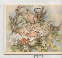 Bébé Dans Un Nid D'oiseau Sous Le Regard étonné Des Parents-oiseaux. - Geboorte & Doop