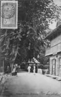 CPA SEYCHELLES Albert Street, Victoria - Seychelles