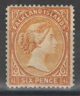 Falkland - YT 13 (*) - Falkland
