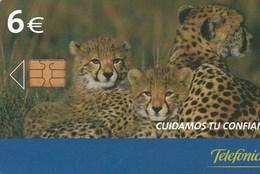 Spain - Cuidamos Tu Confianza S.A.C. Guepardos - P-574 - Espagne
