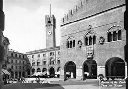 Cartolina Treviso Piazza Dei Signori - Treviso