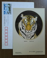 Tiger Painting,China 2002 Harbin Painter Traditional Chinese Painting Advertising Pre-stamped Card - Big Cats (cats Of Prey)