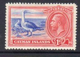 Cayman Islands GV 1935 1d Value, Booby Bird, Hinged Mint, SG 98 - Cayman Islands