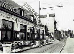 HEKELGEM-ZANDTAPIJT-TAPIS DE SABLE VAN RANSBEECK-PORTRAIT REINE ASTRID-rail Du Tram-photo Gevaert - Affligem