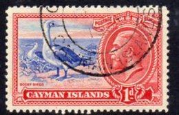 Cayman Islands GV 1935 1d Value, Booby Bird, Used, SG 98 - Cayman Islands